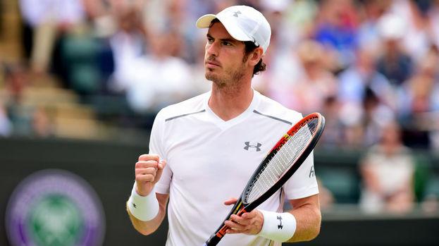 Robin Haase Andy Murray Wimbledon 2015