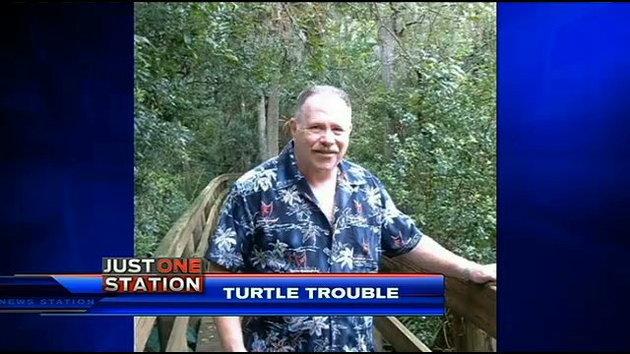 Man attacks sea turtle nest, shoots volunteer in Florida - UPI.com