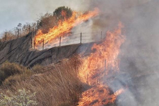 central coast fires - photo #20