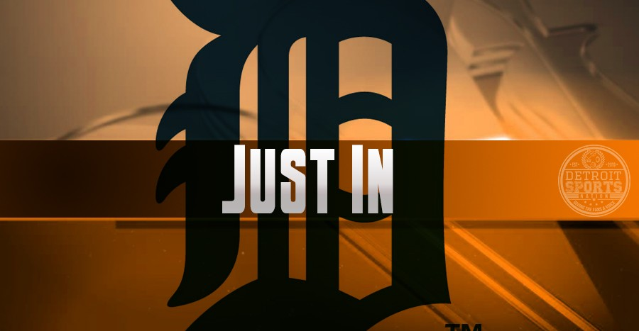 Tigers worried about fan safety after 4-0 loss to Rangers