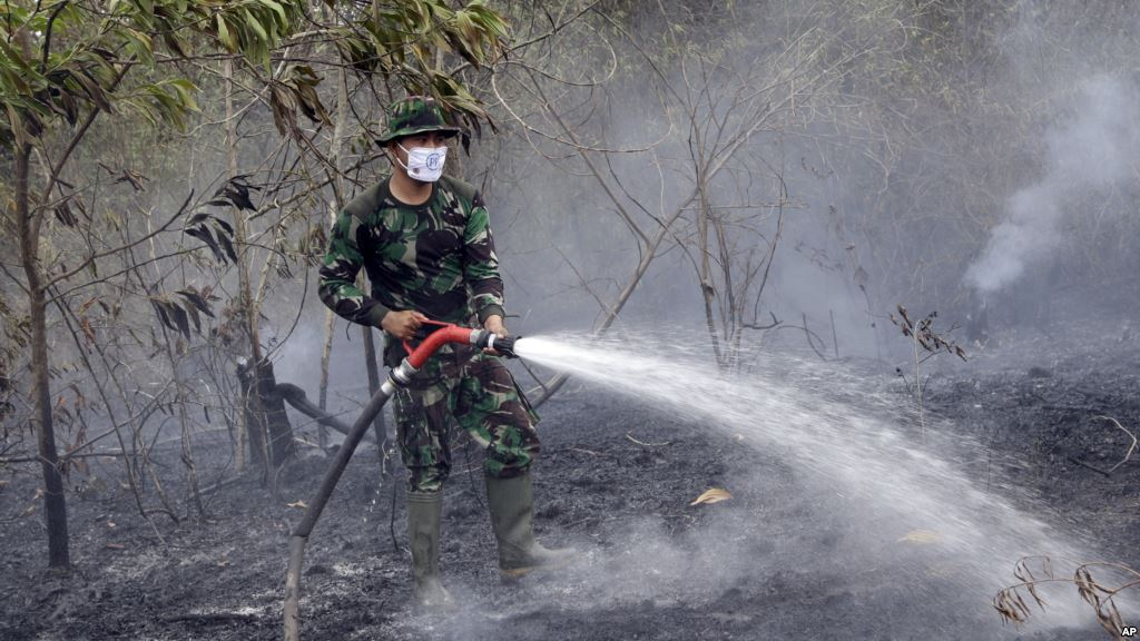 A member of the military works to contain a wildfire on a field in Indralaya South Sumatra Indonesia Sept. 16 2015