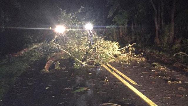 A storm tore through Charleston South Carolina early Friday morning