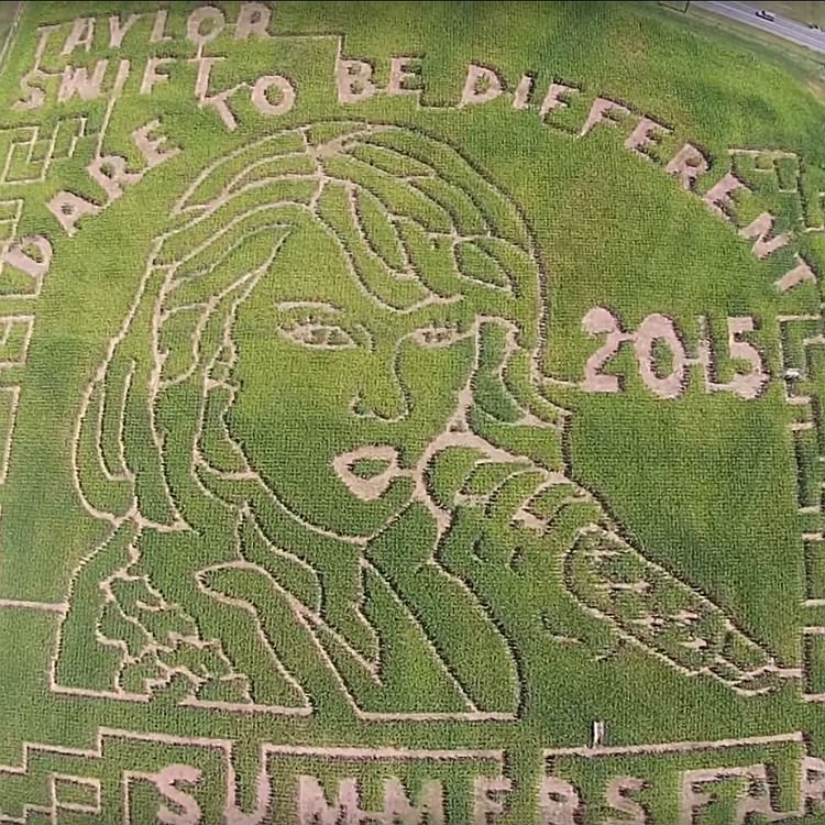 Taylor Swift's face put onto 12 acre maze in Maryland America