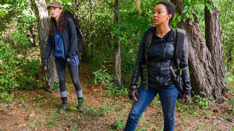 'The Walking Dead' Season 7 Spoilers: Finale Will Be 'Quantum Intense' Says Showrunner