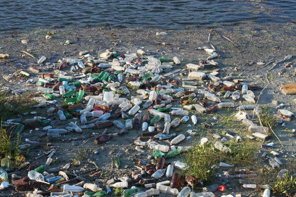 World Oceans Day addresses plastic pollution